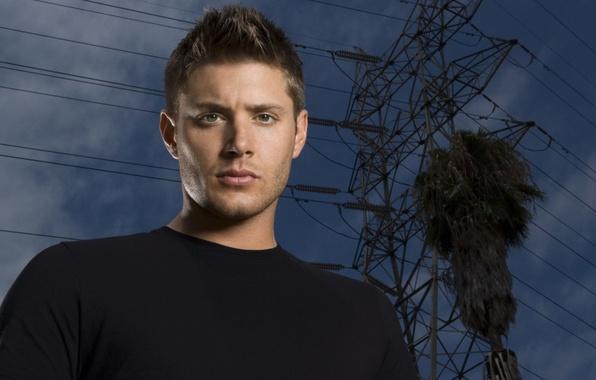 Picture actor, male, Supernatural, Jensen Ackles, Supernatural, brunette, Dean, Jensen Ackles, dean winchester, Dean Winchester