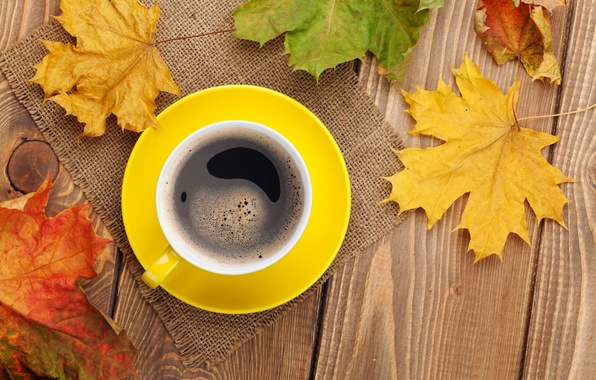 Picture autumn, coffee, Cup, maple, autumn, leaves, cup, coffee, fall, autumn leaves, maple