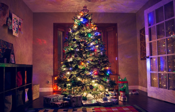 Picture lights, room, tree, new year