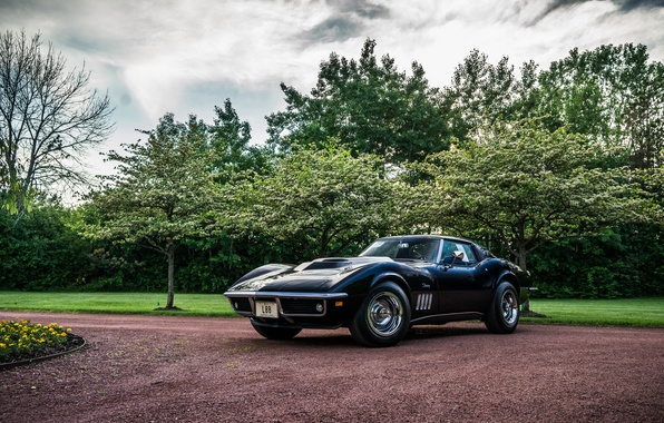 Picture Corvette, 1969, Chevrolet, Coupe, Stingray, Corvette, Stingray