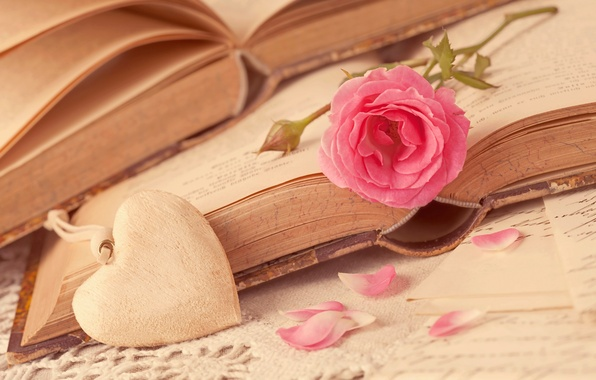 Picture flower, love, heart, rose, books, petals, love, rose, flower, i love you, heart, pink, romantic, …