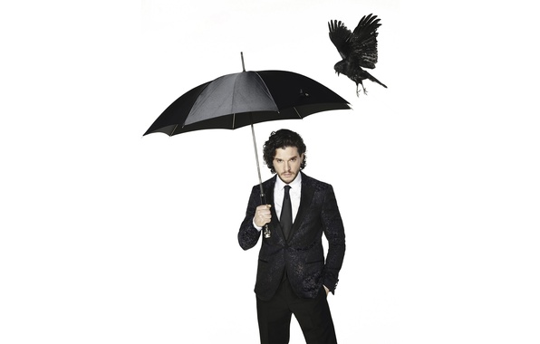 Picture bird, black, umbrella, photographer, costume, newspaper, actor, white background, crow, photoshoot, Kit Harington, Kit Harington, …