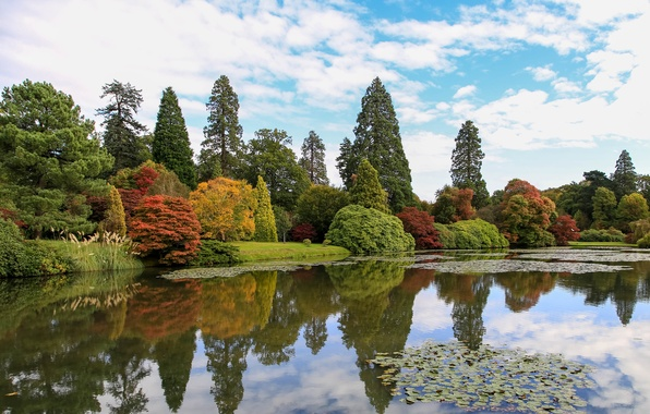 Picture autumn, the sky, clouds, trees, pond, Park