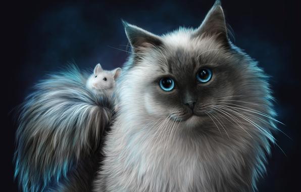 Picture cat, animals, cat, mouse, friends