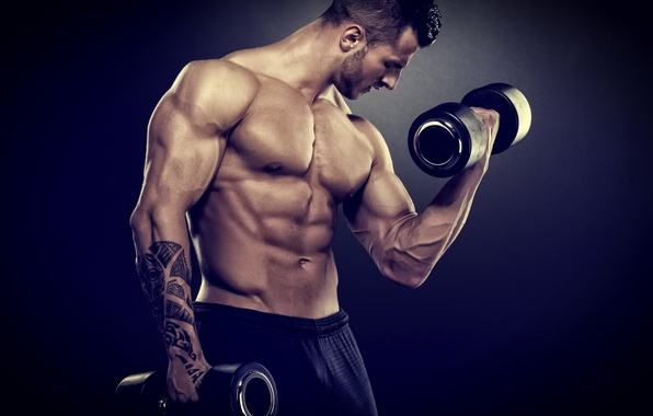 Photo wallpaper muscle, bodybuilder, barbell, weight training