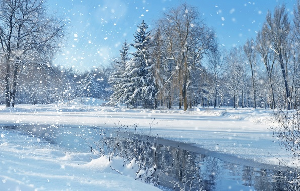 Picture winter, the sky, snow, trees, landscape, nature, lake