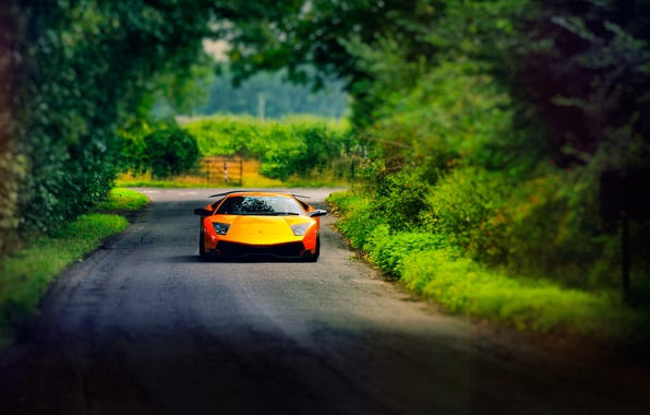 Photo Wallpaper Road Summer Lamborghini Murcielago