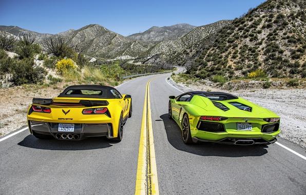 Picture Lamborghini, Z06, Corvette, Chevrolet, supercar, convertible, Chevrolet, Lamborghini, Corvette, LP700-4, Aventador, aventador, Convertible