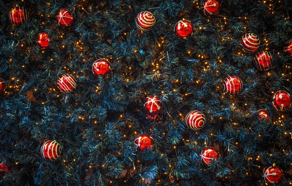 Picture balls, spruce, New Year, Christmas, red, decoration, needles, Christmas, New Year, decor, Xmas, Merry, 2016