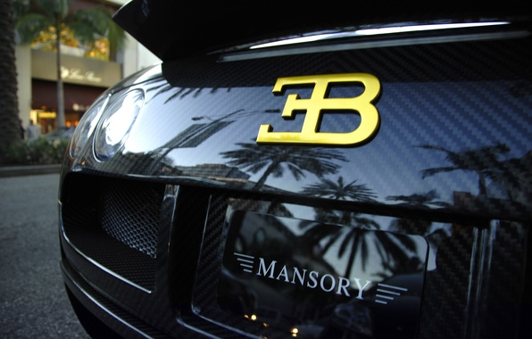 Picture black, Bugatti, veyron, supercar, carbon, supercar, black, Bugatti, mansory, carbon, Veyron