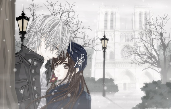 Picture winter, girl, snow, flowers, anime, vampire, guy, two, date
