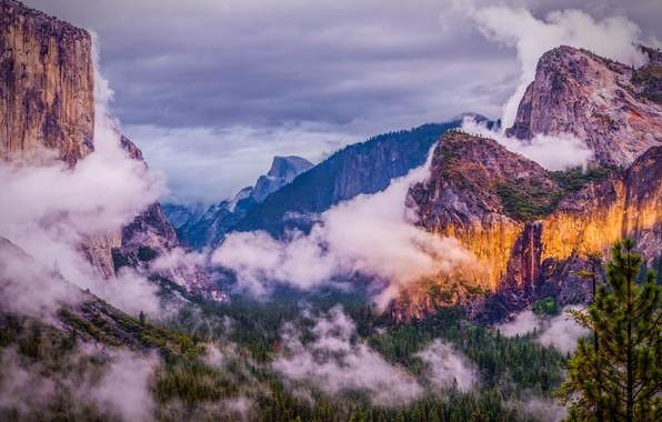 Picture forest, clouds, mountains, nature, USA, national Park, Yosemite national park, Yosemite national Park