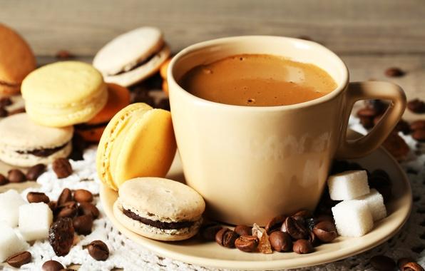 Picture coffee, grain, cookies, Cup, dessert, sweet, dessert, cookies, macaron, macaron, almond