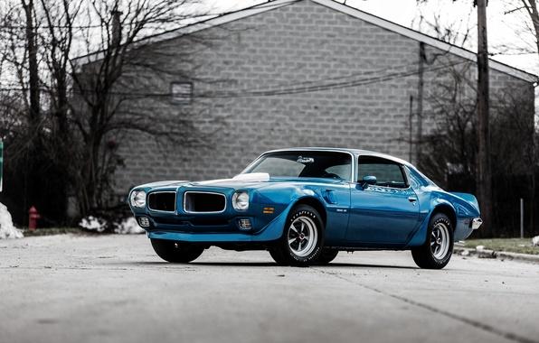 Picture Pontiac, 1970, Pontiac, Firebird, Firebird.