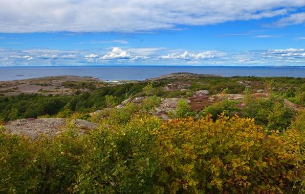 Picture landscape, nature, horizon, Sweden, the bushes, Gotaland, Vastra