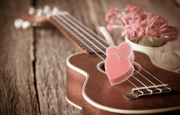 Picture flowers, heart, guitar, love, vintage, heart, romantic