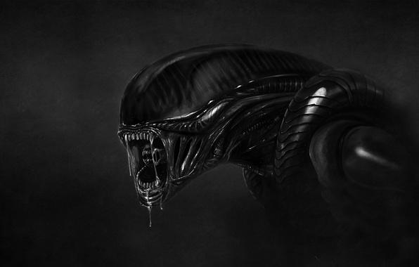 Picture the dark background, monster, others, stranger, alien, alien, drool