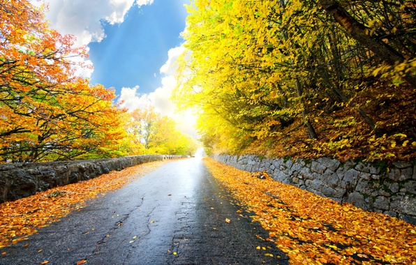 Picture road, autumn, forest, the sky, leaves, clouds, trees, landscape, nature