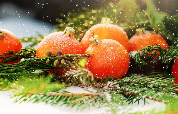 Picture snow, decoration, tree, oranges, New Year, Christmas, fruit, Christmas, decoration, Merry