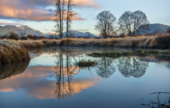 Picture frost, the sky, grass, clouds, trees, mountains, lake, reflection, Canada, British Columbia, Canada
