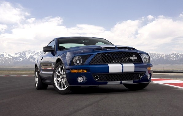 Picture Mustang, Ford, Shelby, GT500, 2008, Mustang, Ford, 40th Anniversary