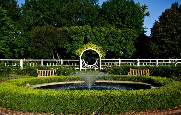 Picture trees, design, Park, the fence, garden, fountain, USA, the bushes, benches, Missouri Botanical Garden