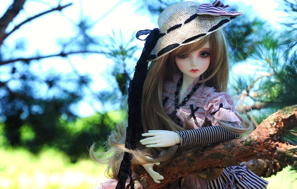 Picture nature, toy, branch, hat, doll, long hair