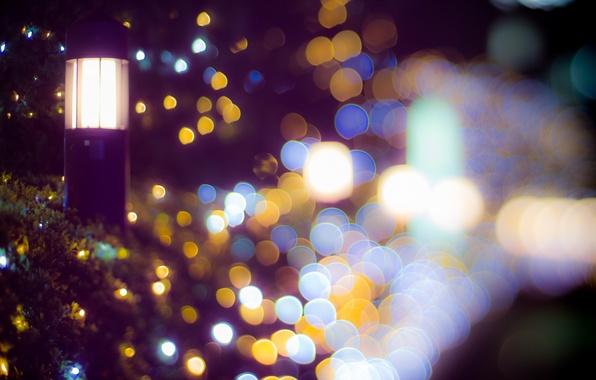 Picture Light, Tokyo, Japan, Shinjuku, Night, Bokeh