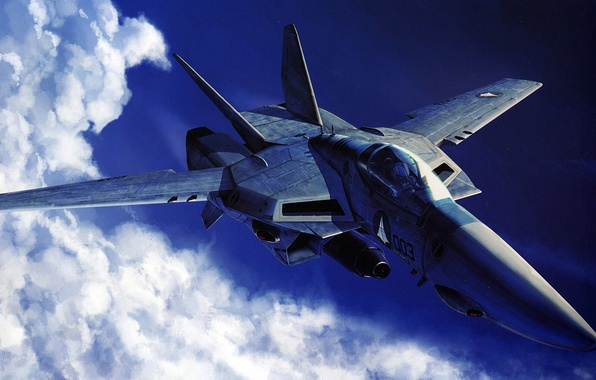 Picture the sky, the plane, future, technology, fighter, VF-1A Valkyrie Jet Fighter