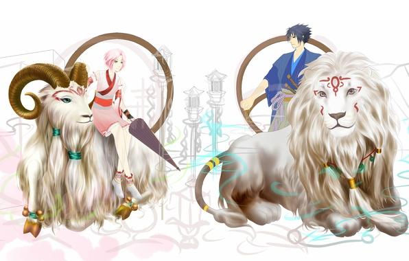 Picture Leo, Sakura, Sasuke, naruto, the signs of the zodiac, art, Aries, humoster