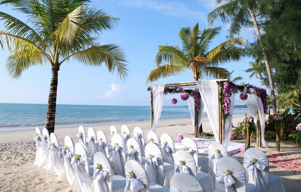 Picture sand, sea, flowers, nature, tropics, coast, chairs, petals, gazebo
