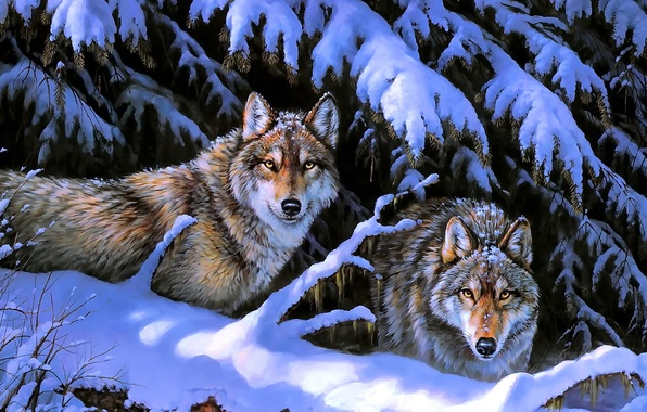 Picture winter, animals, snow, trees, nature, wolves