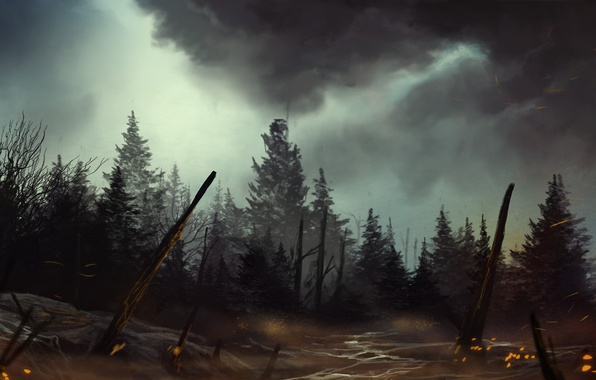 Picture forest, trees, night, fire, art, painted landscape