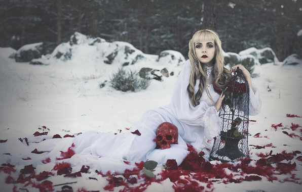 Picture girl, skull, roses, cell, feathers