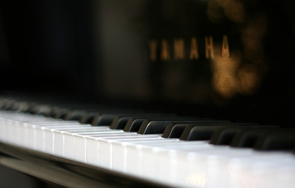 Picture macro, piano, macro, plan
