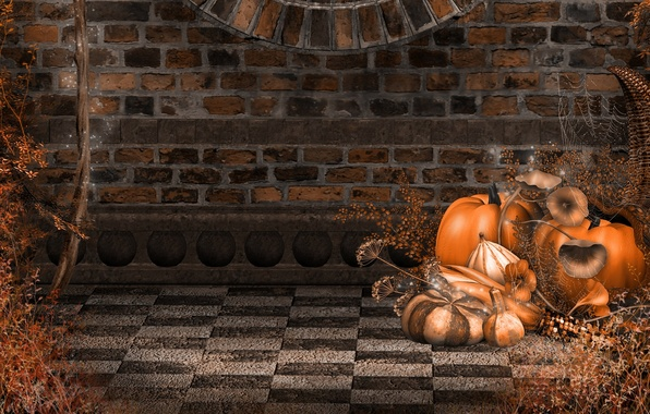 Picture autumn, wall, holiday, web, pumpkin, Halloween, wall, Halloween, bricks, bricks, autumn, holiday, pumpkins, toadstool, spiderweb, …
