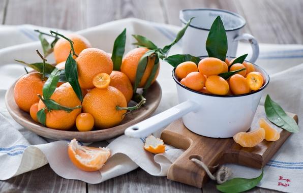 Picture leaves, oranges, dishes, Board, fruit, orange, peel, tangerines, Anna Verdina, kumquat