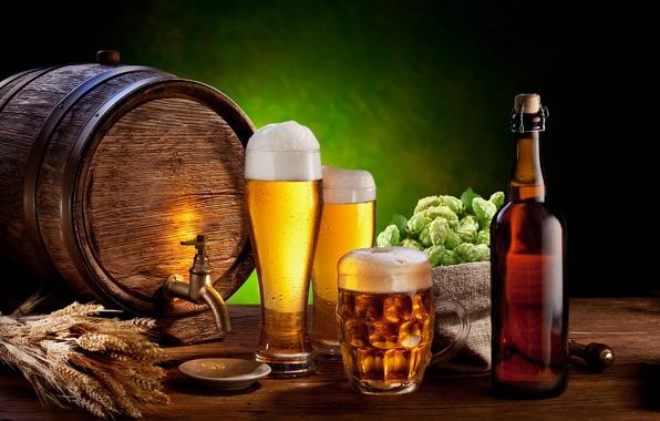 Picture foam, table, bottle, beer, glasses, ears, mugs, barrel