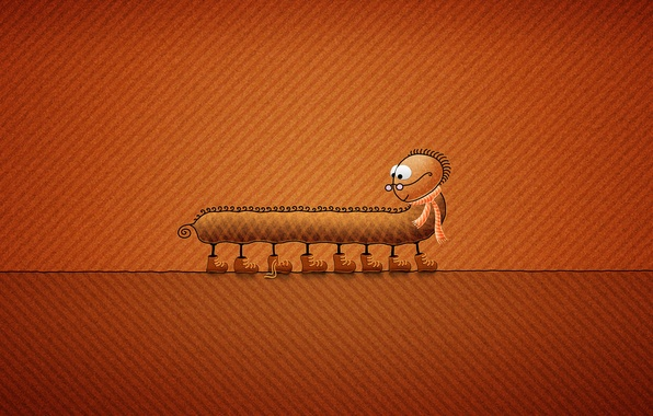 Picture minimalism, shoes, scarf, glasses, insect, centipede, vladstudio, orange background, laces