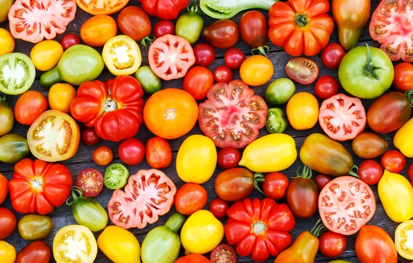 Picture harvest, vegetables, tomatoes