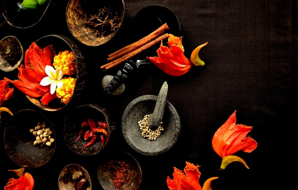 Picture table, petals, spices, mortar, star anise, pepper, bowls