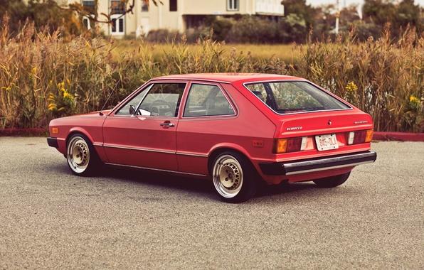 Picture Volkswagen, 1975, Scirocco, resto, MK1
