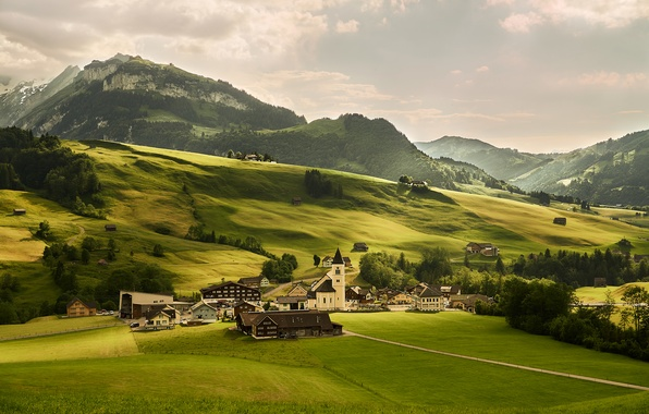 Picture greens, trees, mountains, field, home, Switzerland, Alps, meadows