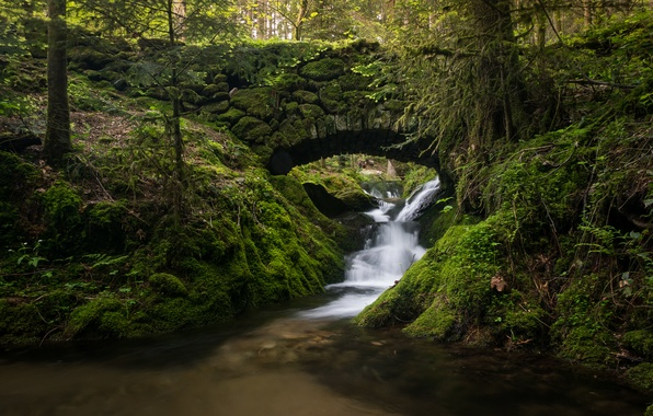 Picture forest, bridge, stream, Germany, river, cascade, Germany, Black Forest, The black forest