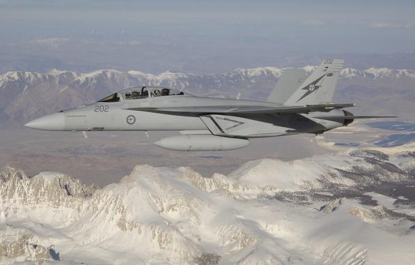 Picture flight, mountains, fighter, cabin, pilot, multipurpose, Hornet, CF-18