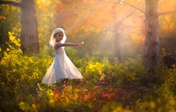 Picture autumn, nature, dandelion, dress, girl