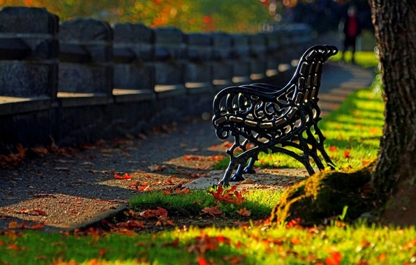 Picture autumn, forest, grass, leaves, trees, bench, nature, Park, colors, hdr, grass, walk, forest, road, trees, …