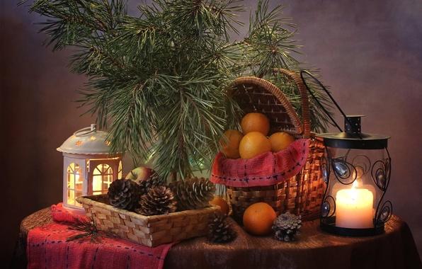 Picture Apple, orange, candle, lantern, bumps, pine