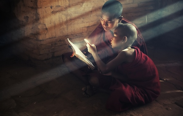 Picture light, children, book, saint, book, children, reading, Buddhism, kids, monks, monks, read, buddism