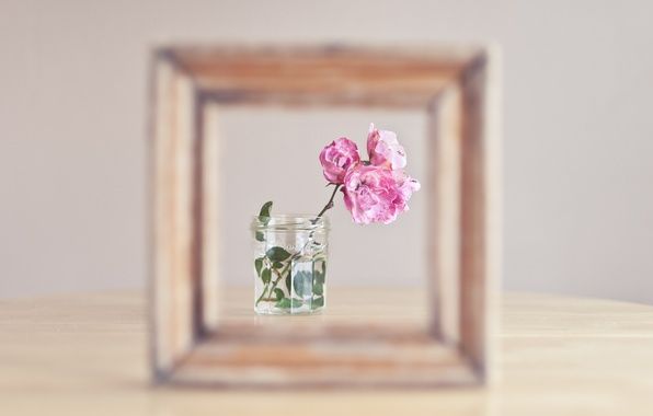 Picture flowers, background, frame